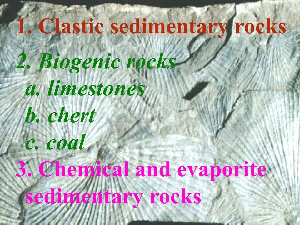 2.Biogenic rocks a. limestones b. chert c. coal 3.