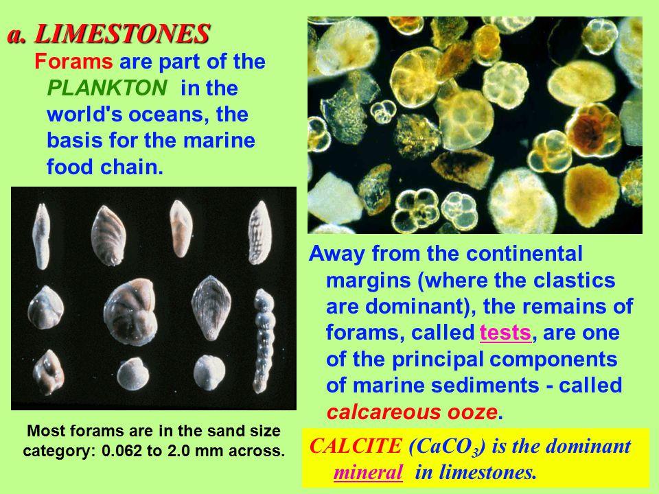 2. Biogenic rocks a. limestones b. chert c. coal 3.