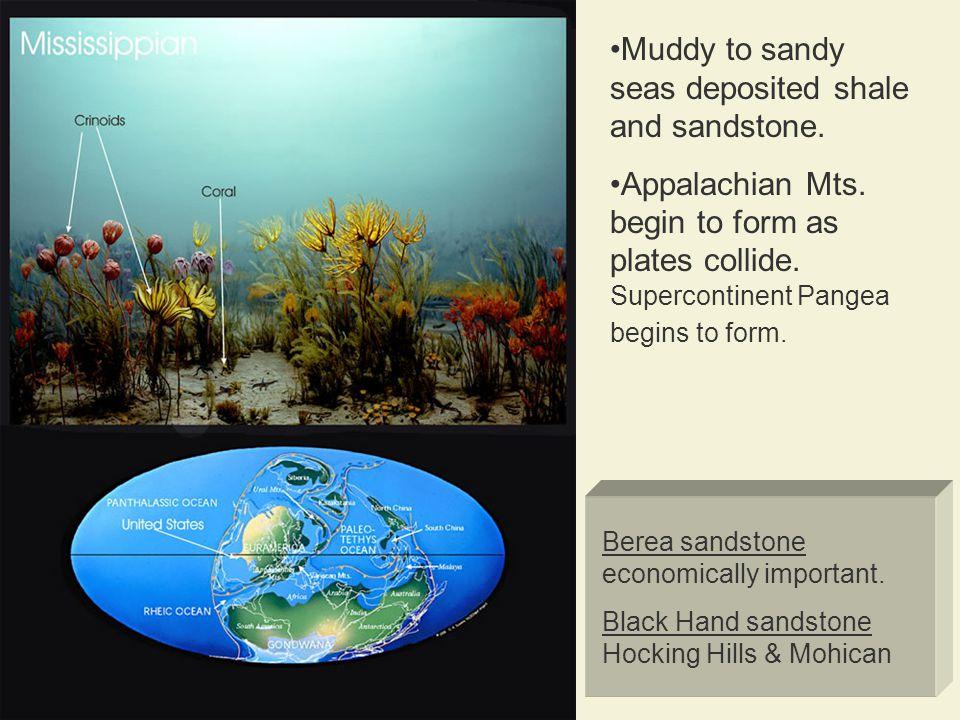 Berea sandstone economically important.