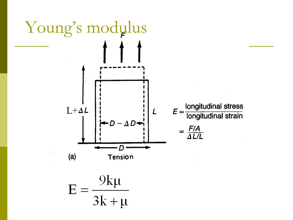 Young's modulus L+