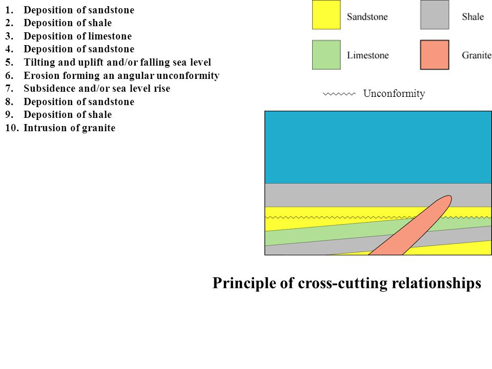 Principle of cross-cutting relationships Unconformity 1.Deposition of sandstone 2.Deposition of shale 3.Deposition of limestone 4.Deposition of sandst