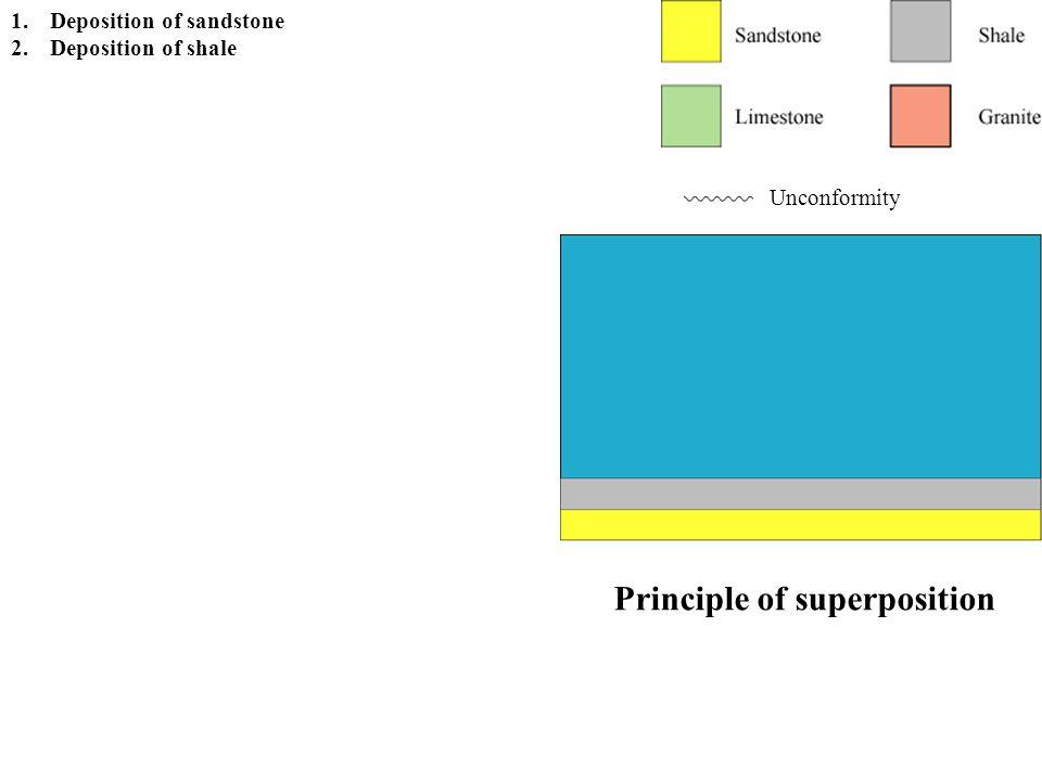 Principle of superposition Unconformity 1.Deposition of sandstone 2.Deposition of shale 3.Deposition of limestone