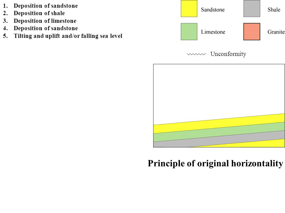 Principle of erosional unconformities Unconformity 1.Deposition of sandstone 2.Deposition of shale 3.Deposition of limestone 4.Deposition of sandstone 5.Tilting and uplift and/or falling sea level 6.Erosion forming an angular unconformity Assignment hint: Note that unconformities that are tilted, but parallel to underlying strata, formed prior to the event that caused the tilting.