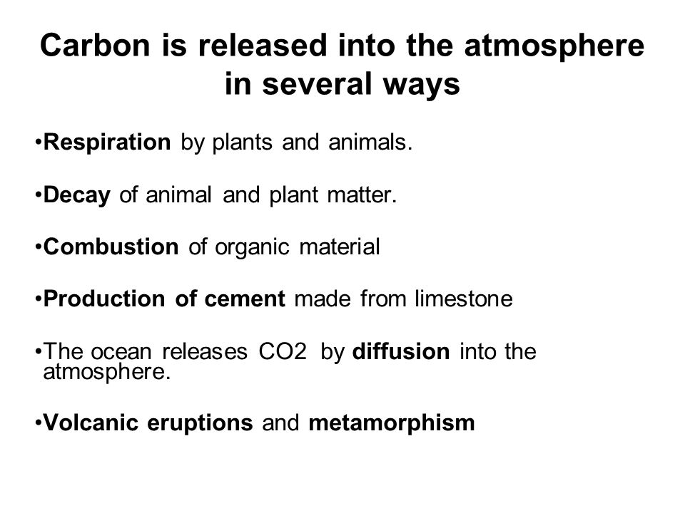 Carbon is released into the atmosphere in several ways Respiration by plants and animals.