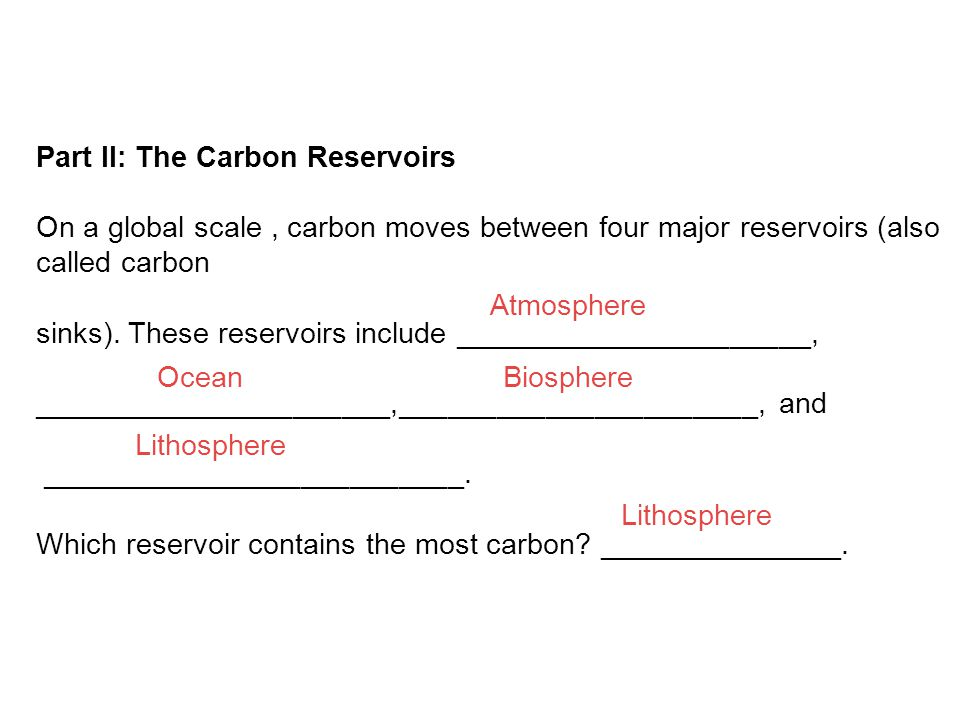 Part II: The Carbon Reservoirs On a global scale, carbon moves between four major reservoirs (also called carbon sinks).