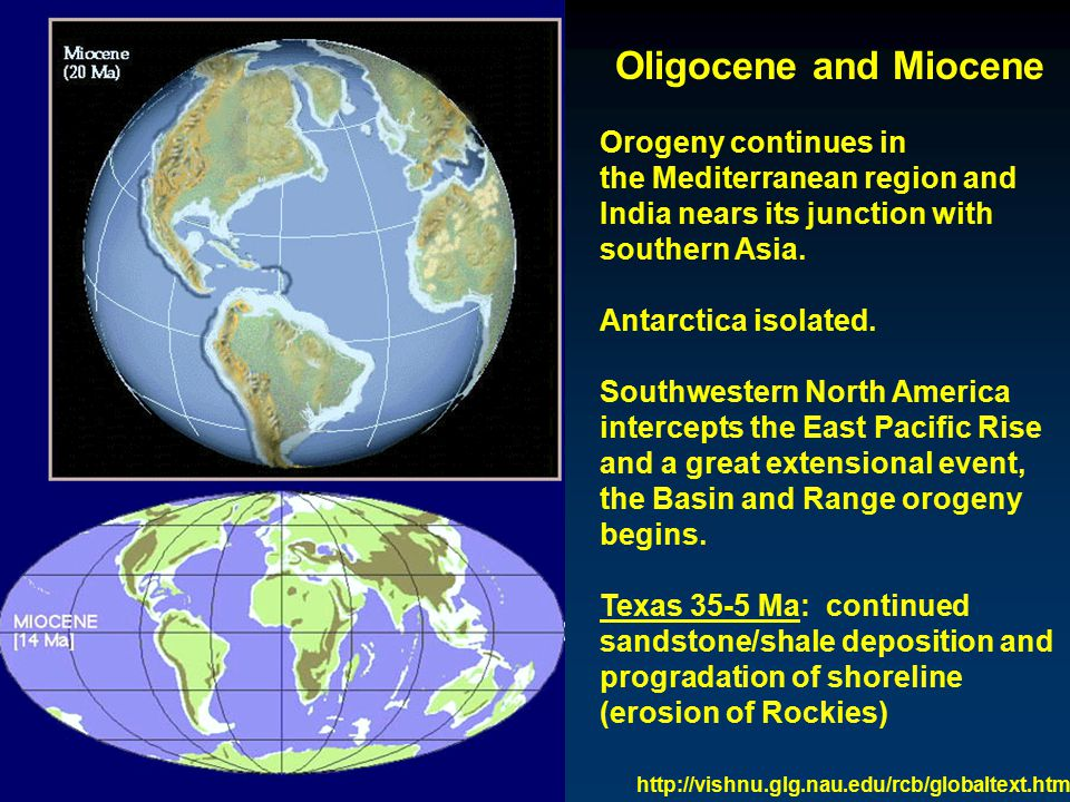 Oligocene and Miocene Orogeny continues in the Mediterranean region and India nears its junction with southern Asia.