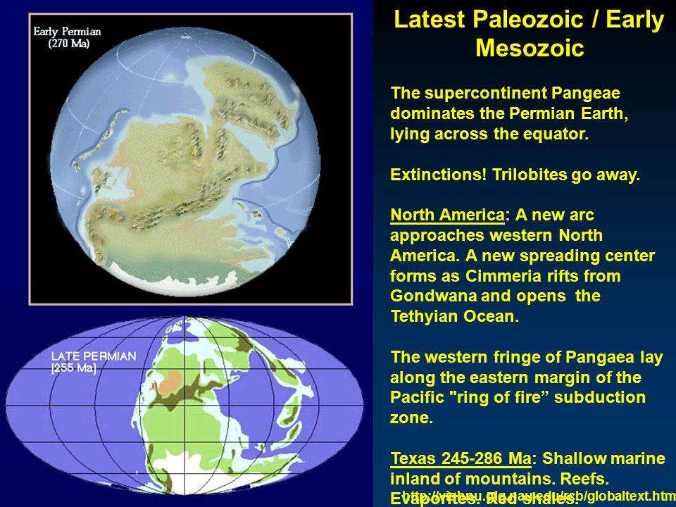 Latest Paleozoic / Early Mesozoic Mammals.