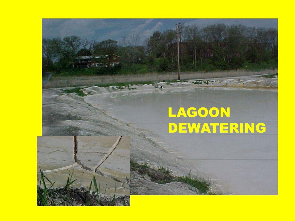 LAGOON DEWATERING