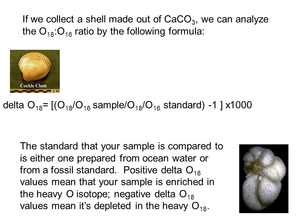 If we collect a shell made out of CaCO 3, we can analyze the O 18 :O 16 ratio by the following formula: delta O 18 = [(O 18 /O 16 sample/O 18 /O 16 standard) -1 ] x1000 The standard that your sample is compared to is either one prepared from ocean water or from a fossil standard.