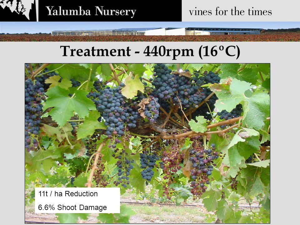 Treatment - 440rpm (16ºC) 11t / ha Reduction 6.6% Shoot Damage