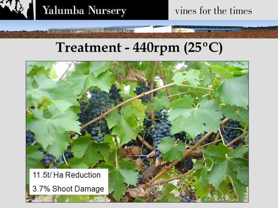 Treatment - 440rpm (25ºC) 11.5t/ Ha Reduction 3.7% Shoot Damage