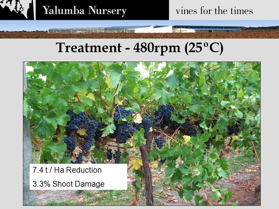 Treatment - 480rpm (25ºC) 7.4 t / Ha Reduction 3.3% Shoot Damage Change Slide 7.4 t / Ha Reduction 3.3% Shoot Damage