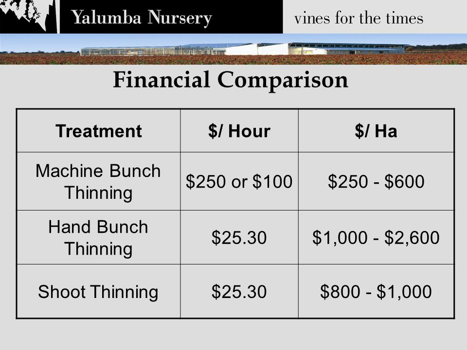 Financial Comparison Treatment$/ Hour$/ Ha Machine Bunch Thinning $250 or $100$250 - $600 Hand Bunch Thinning $25.30$1,000 - $2,600 Shoot Thinning$25.30$800 - $1,000