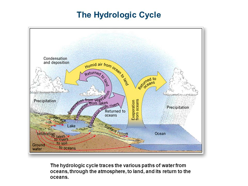 The Hydrologic Cycle The hydrologic cycle traces the various paths of water from oceans, through the atmosphere, to land, and its return to the oceans