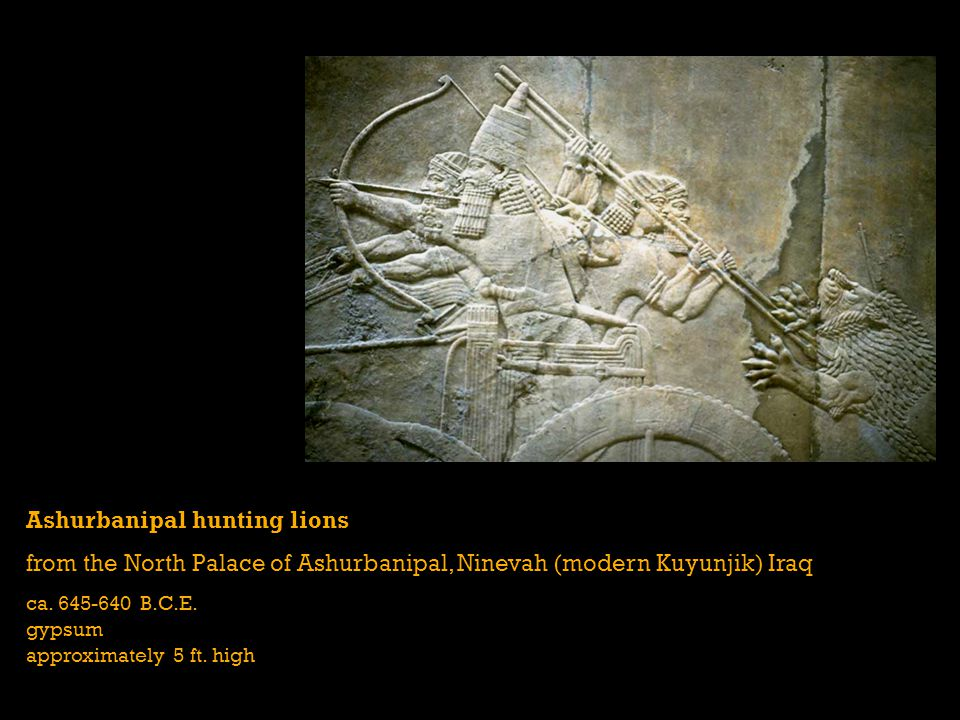 Ashurbanipal hunting lions from the North Palace of Ashurbanipal, Ninevah (modern Kuyunjik) Iraq ca. 645-640 B.C.E. gypsum approximately 5 ft. high