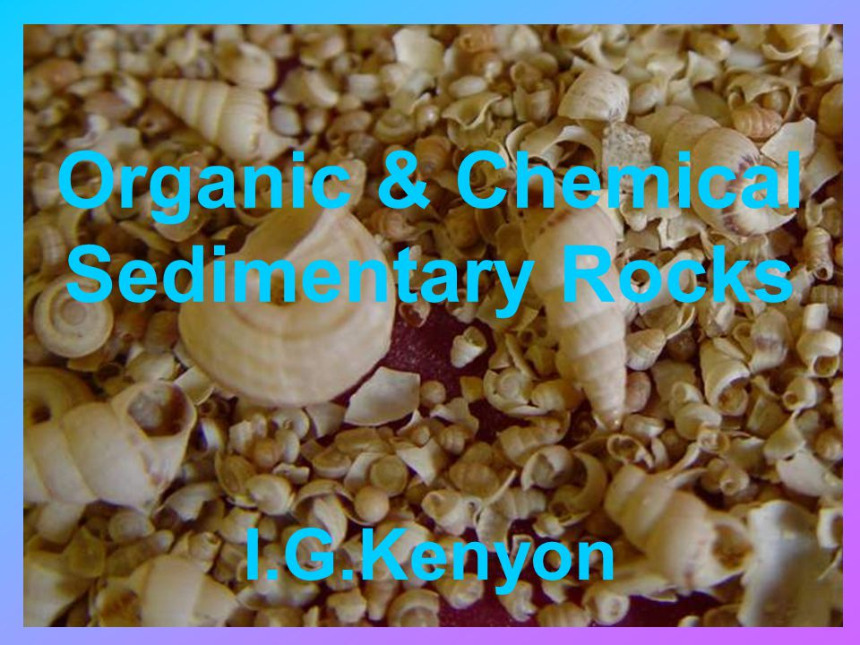 Organic & Chemical Sedimentary Rocks I.G.Kenyon