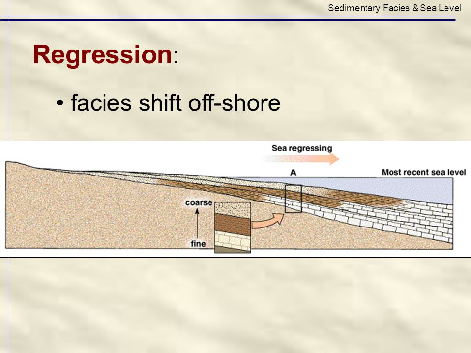 Regression : facies shift off-shore Sedimentary Facies & Sea Level