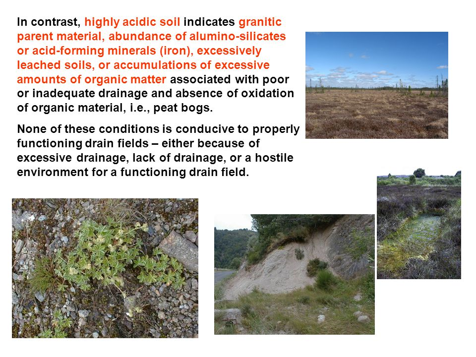 In contrast, highly acidic soil indicates granitic parent material, abundance of alumino-silicates or acid-forming minerals (iron), excessively leache