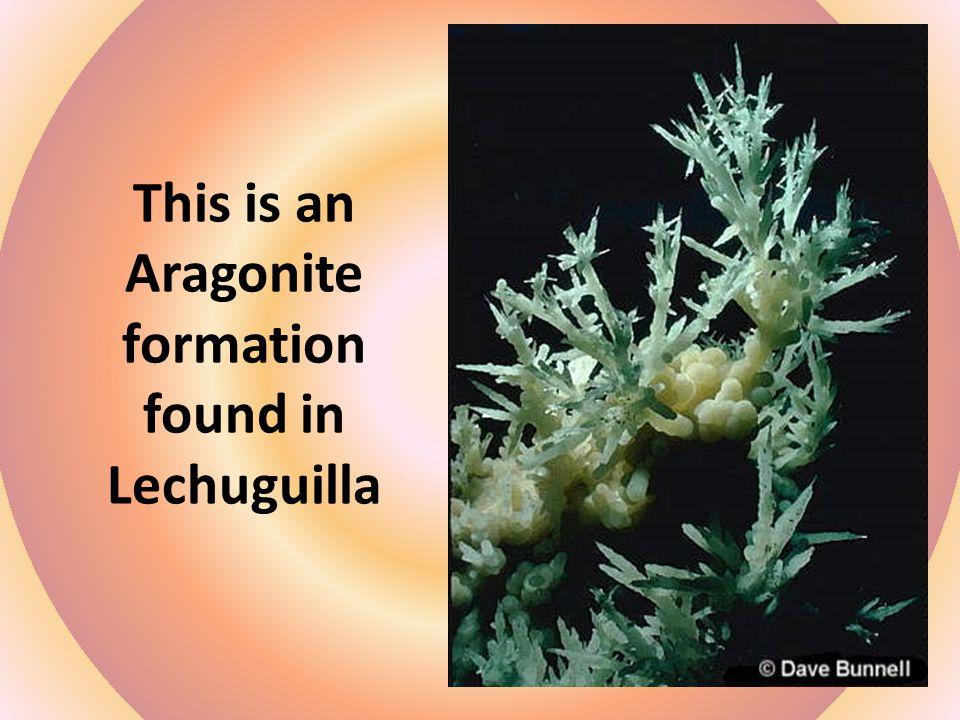 This is an Aragonite formation found in Lechuguilla