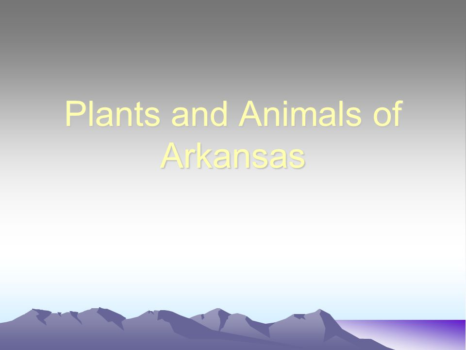 Plants and Animals of Arkansas