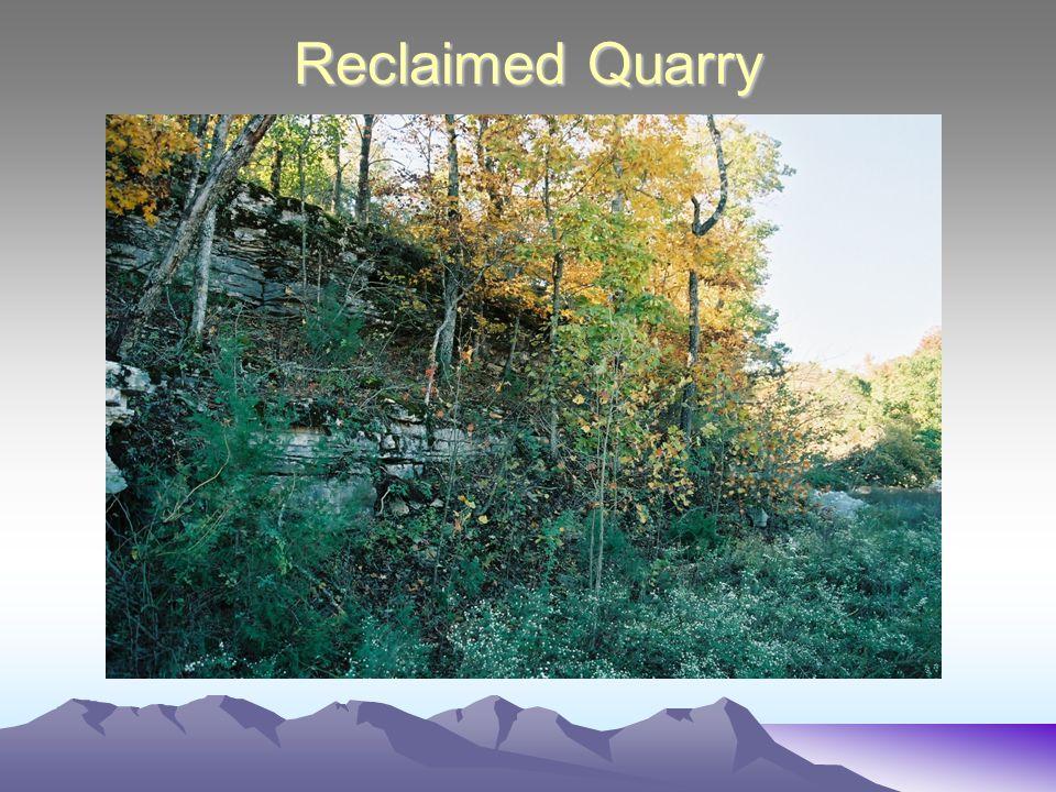Reclaimed Quarry