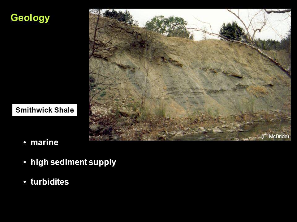 marine high sediment supply turbidites Smithwick Shale Geology (E. McBride)