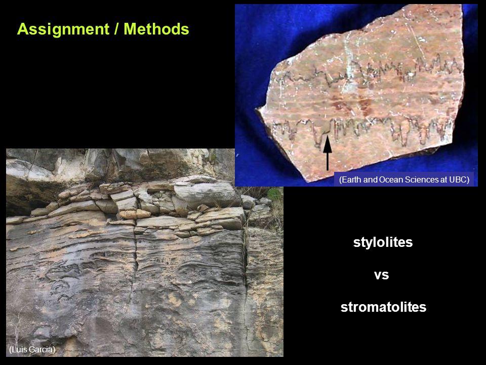 stylolites vs stromatolites Assignment / Methods (Luis Garcia) (Earth and Ocean Sciences at UBC)