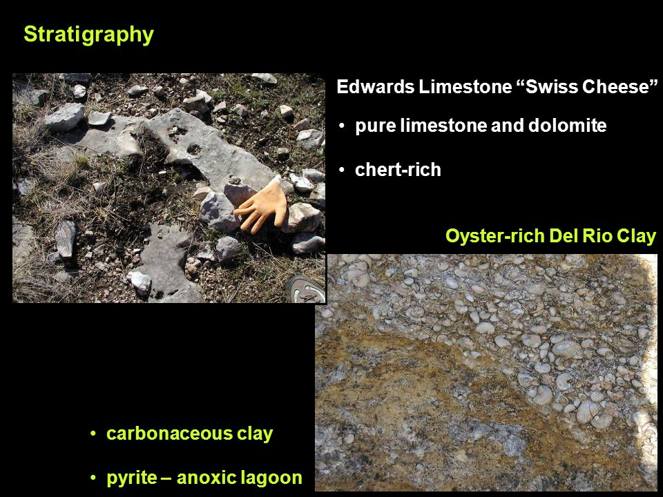Oyster-rich Del Rio Clay pure limestone and dolomite chert-rich carbonaceous clay pyrite – anoxic lagoon Edwards Limestone Swiss Cheese Stratigraphy