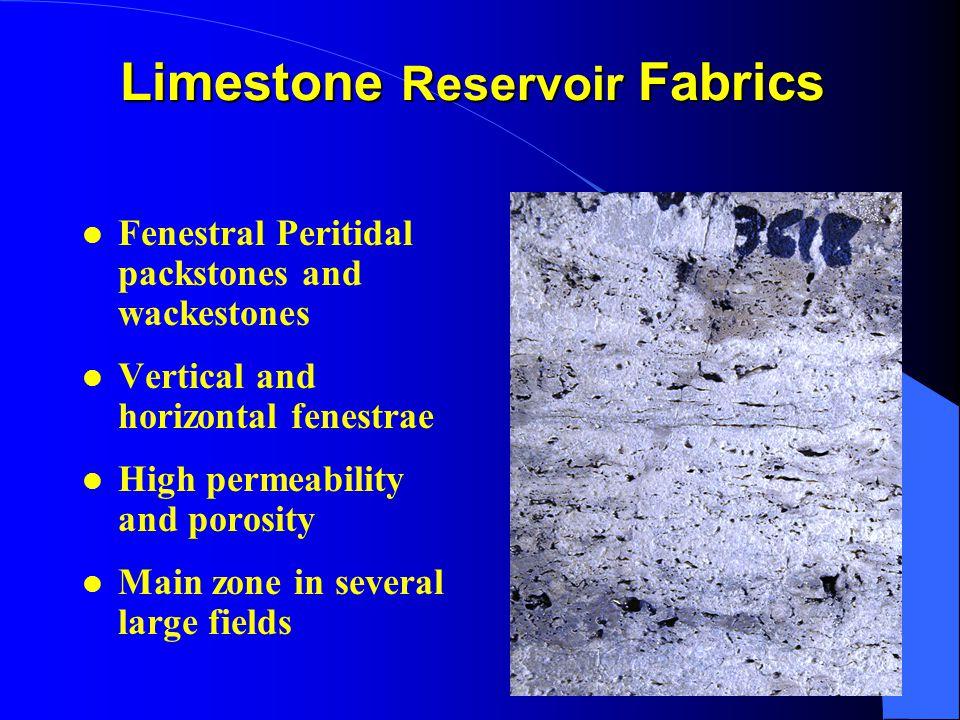 Limestone Reservoir Fabrics l Fenestral Peritidal packstones and wackestones l Vertical and horizontal fenestrae l High permeability and porosity l Main zone in several large fields