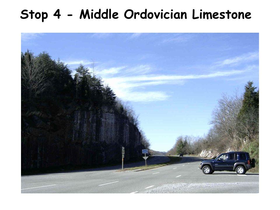 Stop 4 - Middle Ordovician Limestone