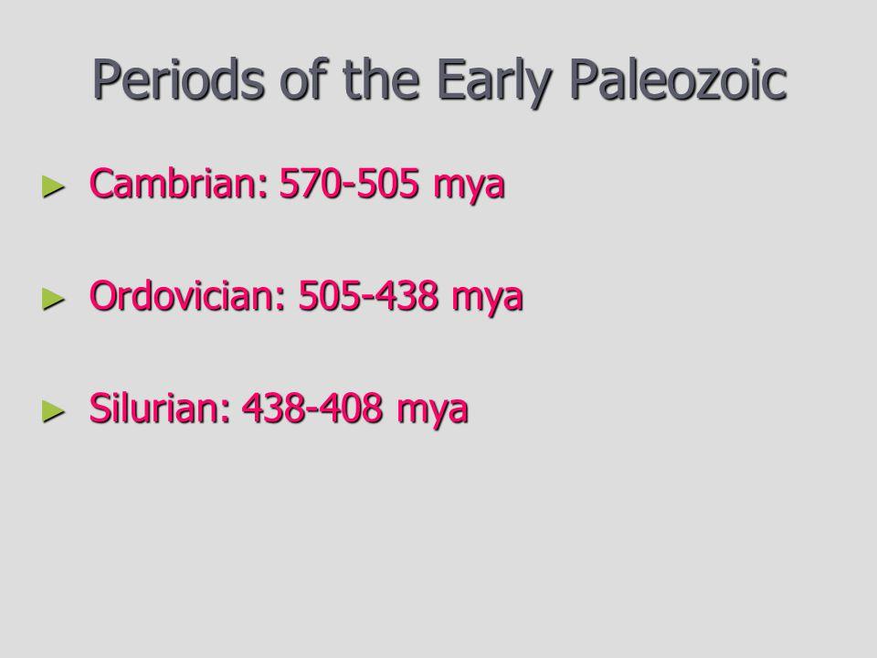 Periods of the Early Paleozoic ► Cambrian: 570-505 mya ► Ordovician: 505-438 mya ► Silurian: 438-408 mya