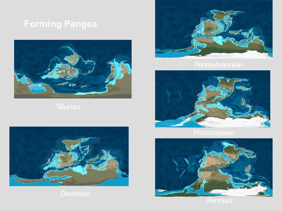 Forming Pangea Devonian Pennsylvannian Mississippian Silurian Permian