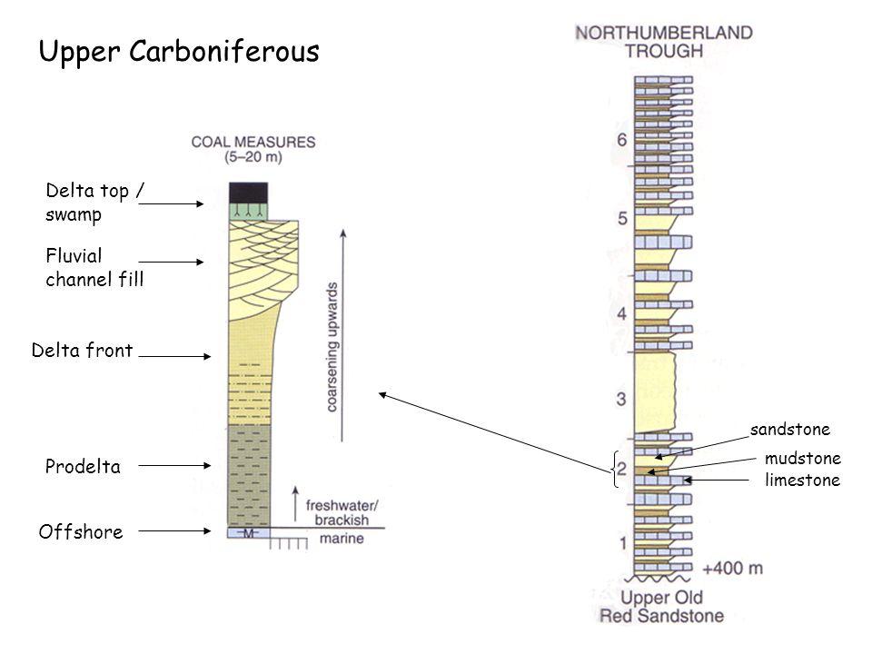 Upper Carboniferous limestone mudstone sandstone Delta top / swamp Fluvial channel fill Delta front Prodelta Offshore