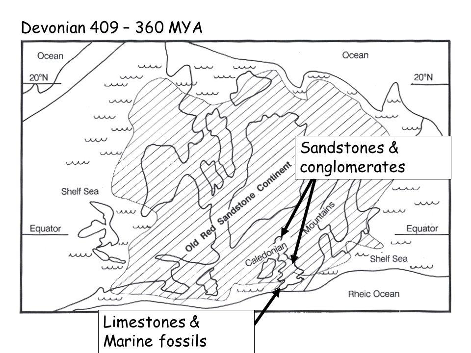 Devonian 409 – 360 MYA Sandstones & conglomerates Limestones & Marine fossils