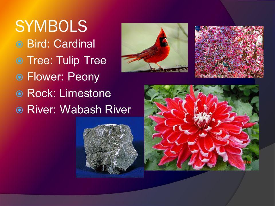 SYMBOLS  Bird: Cardinal  Tree: Tulip Tree  Flower: Peony  Rock: Limestone  River: Wabash River