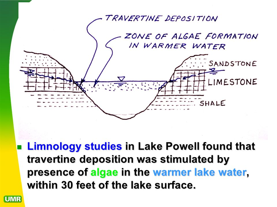 Limnology studies in Lake Powell found that travertine deposition was stimulated by presence of algae in the warmer lake water, within 30 feet of the lake surface.