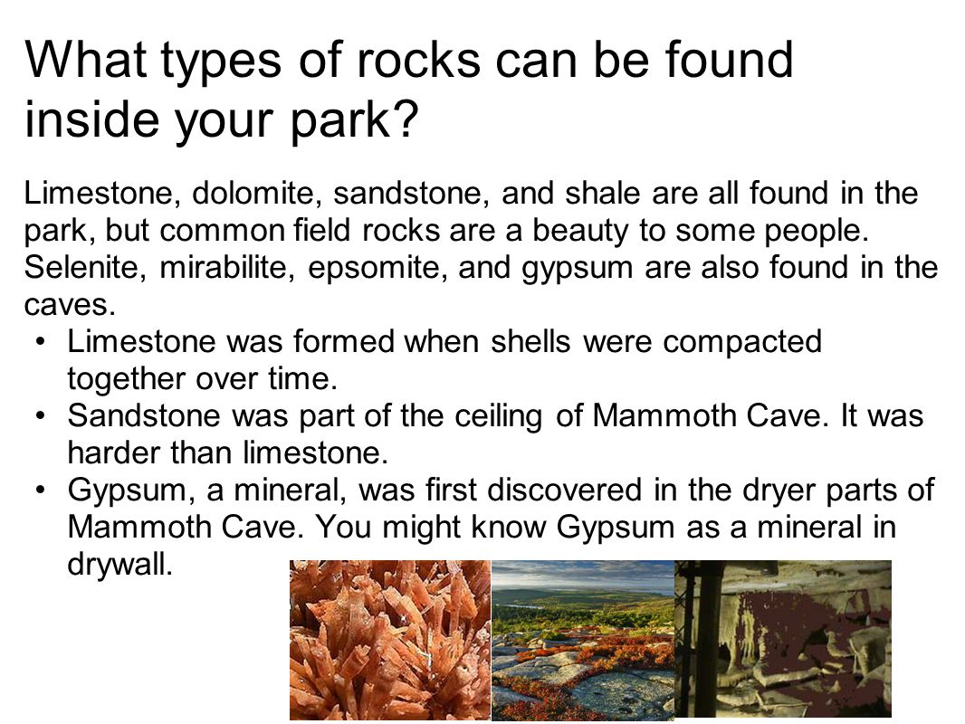 What types of rocks can be found inside your park? Limestone, dolomite, sandstone, and shale are all found in the park, but common field rocks are a b