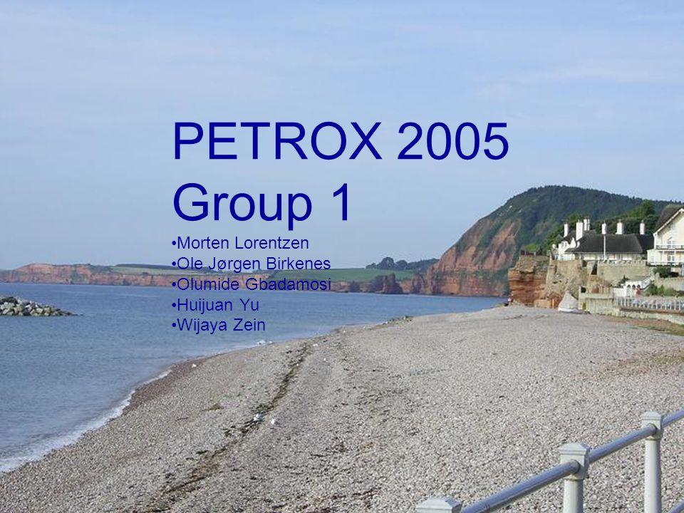 PETROX 2005 Group 1 Morten Lorentzen Ole Jørgen Birkenes Olumide Gbadamosi Huijuan Yu Wijaya Zein
