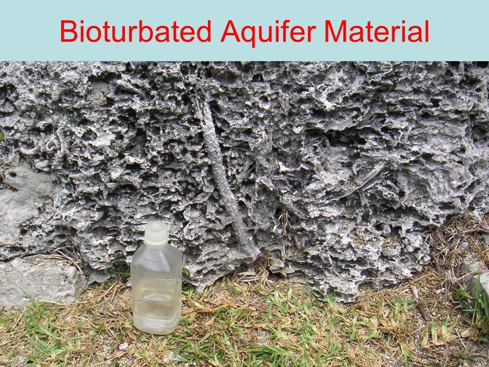 24 Bioturbated Aquifer Material