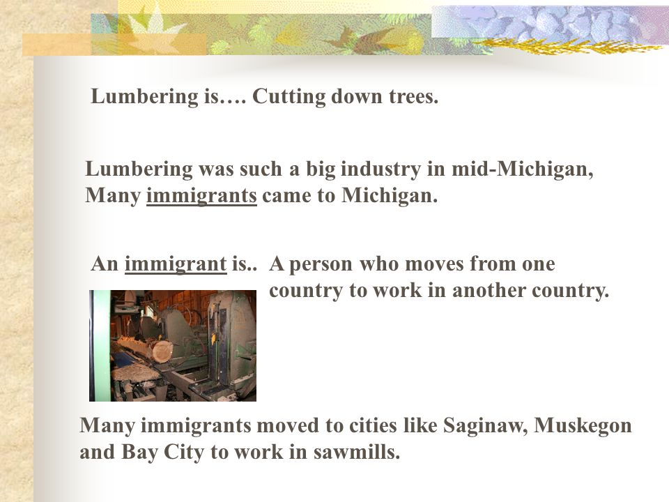 Lumbering is….Cutting down trees.