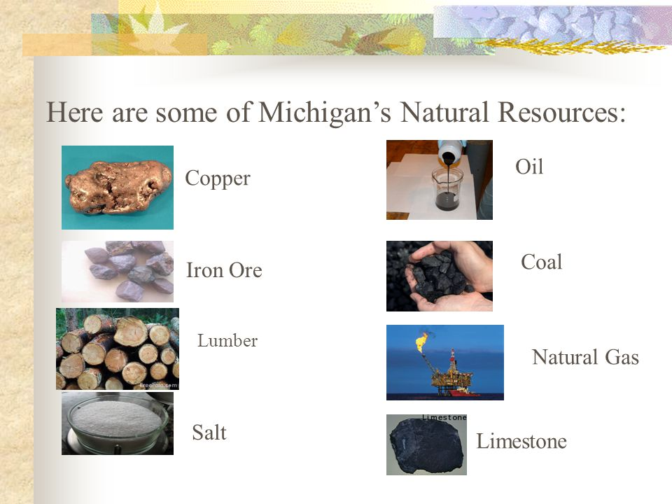 Here are some of Michigan's Natural Resources: Copper Iron Ore Salt Oil Coal Natural Gas Limestone Lumber