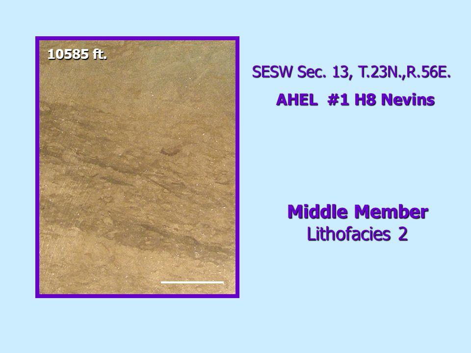 SESW Sec. 13, T.23N.,R.56E. AHEL #1 H8 Nevins Middle Member Lithofacies 2 10585 ft.