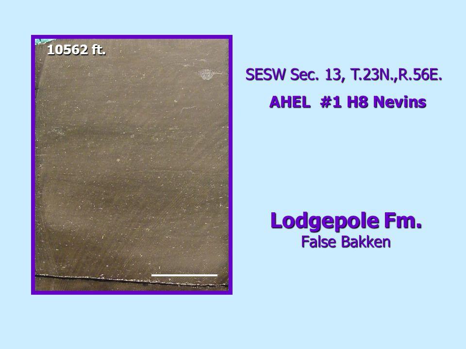 SESW Sec. 13, T.23N.,R.56E. AHEL #1 H8 Nevins 10562 ft. Lodgepole Fm. False Bakken