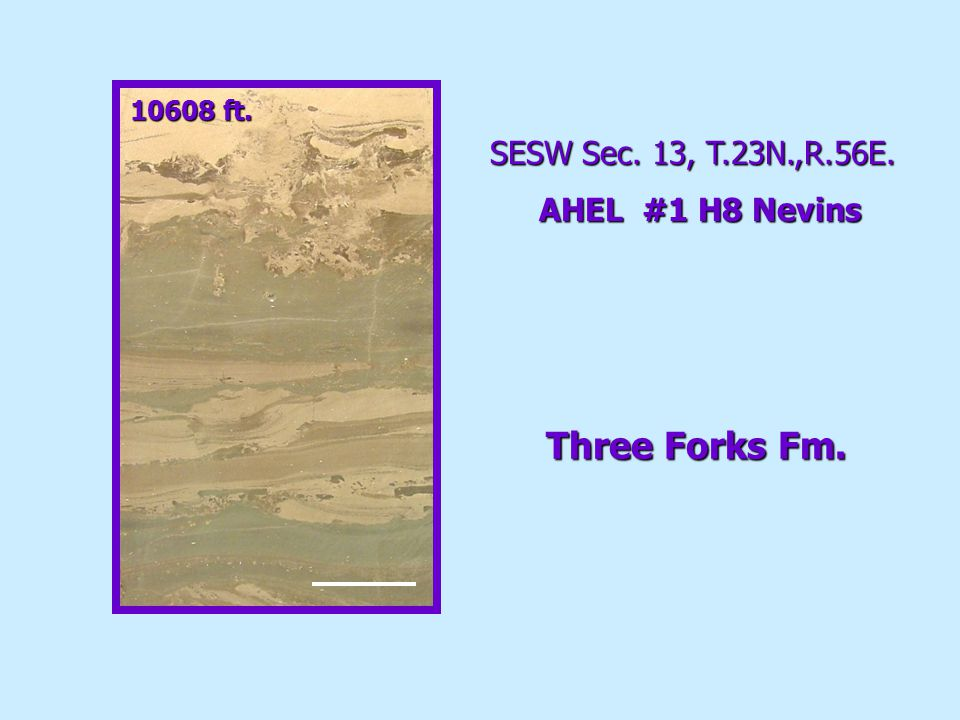 Middle Member Lithofacies 2 SESW Sec. 13, T.23N.,R.56E. AHEL #1 H8 Nevins