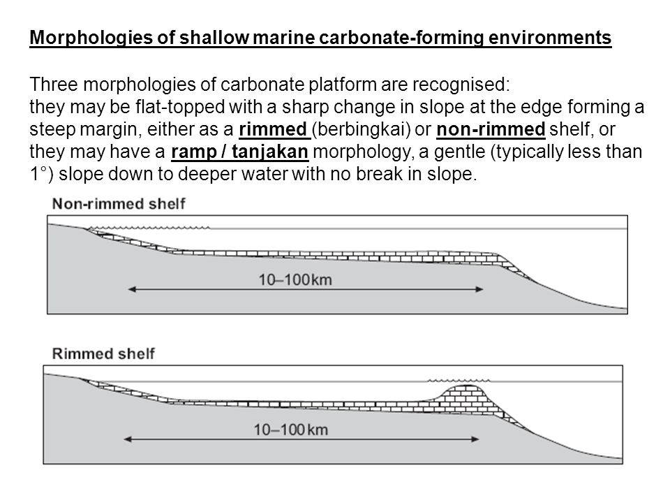 Three morphologies of carbonate platform are recognised: they may be flat-topped with a sharp change in slope at the edge forming a steep margin, eith