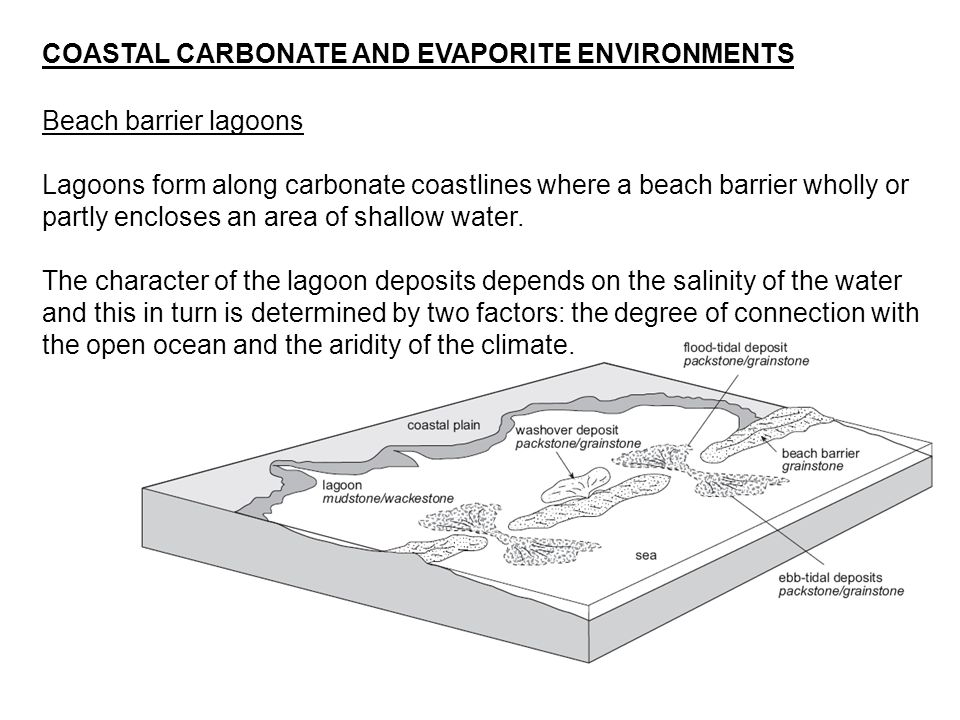Beach barrier lagoons Lagoons form along carbonate coastlines where a beach barrier wholly or partly encloses an area of shallow water. The character
