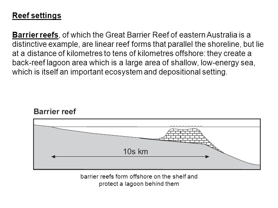 Barrier reefs, of which the Great Barrier Reef of eastern Australia is a distinctive example, are linear reef forms that parallel the shoreline, but l