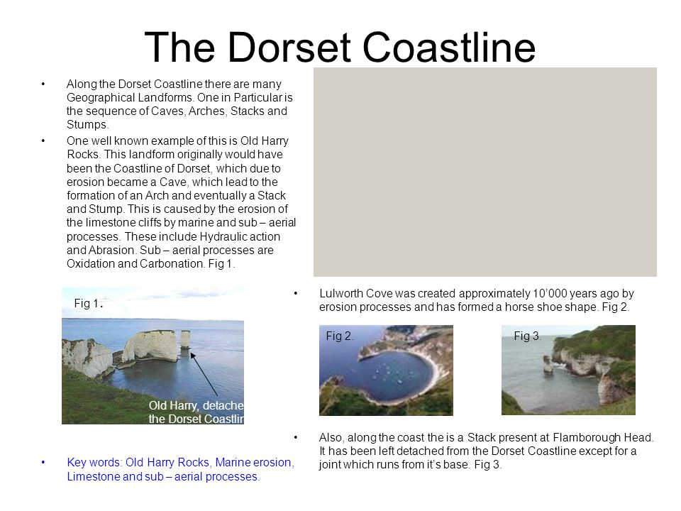 The Dorset Coastline Along the Dorset Coastline there are many Geographical Landforms. One in Particular is the sequence of Caves, Arches, Stacks and