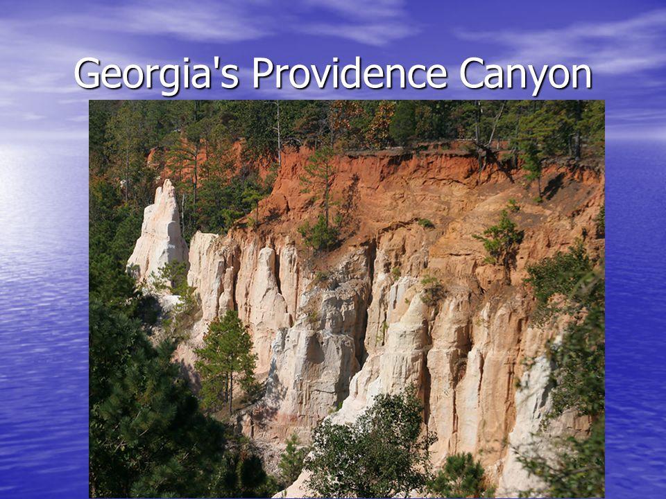 Georgia's Providence Canyon