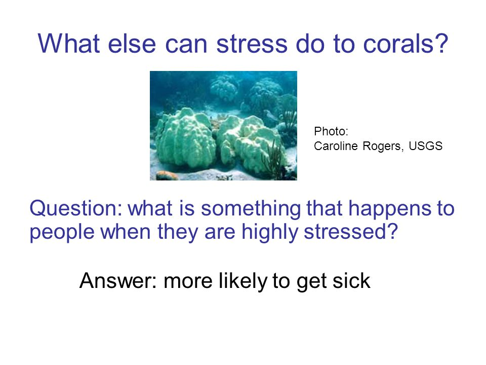 Question: what is something that happens to people when they are highly stressed.